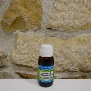 Extrait hydro-alcoolique d'Angélique bio Herboristerie des mille feuilles