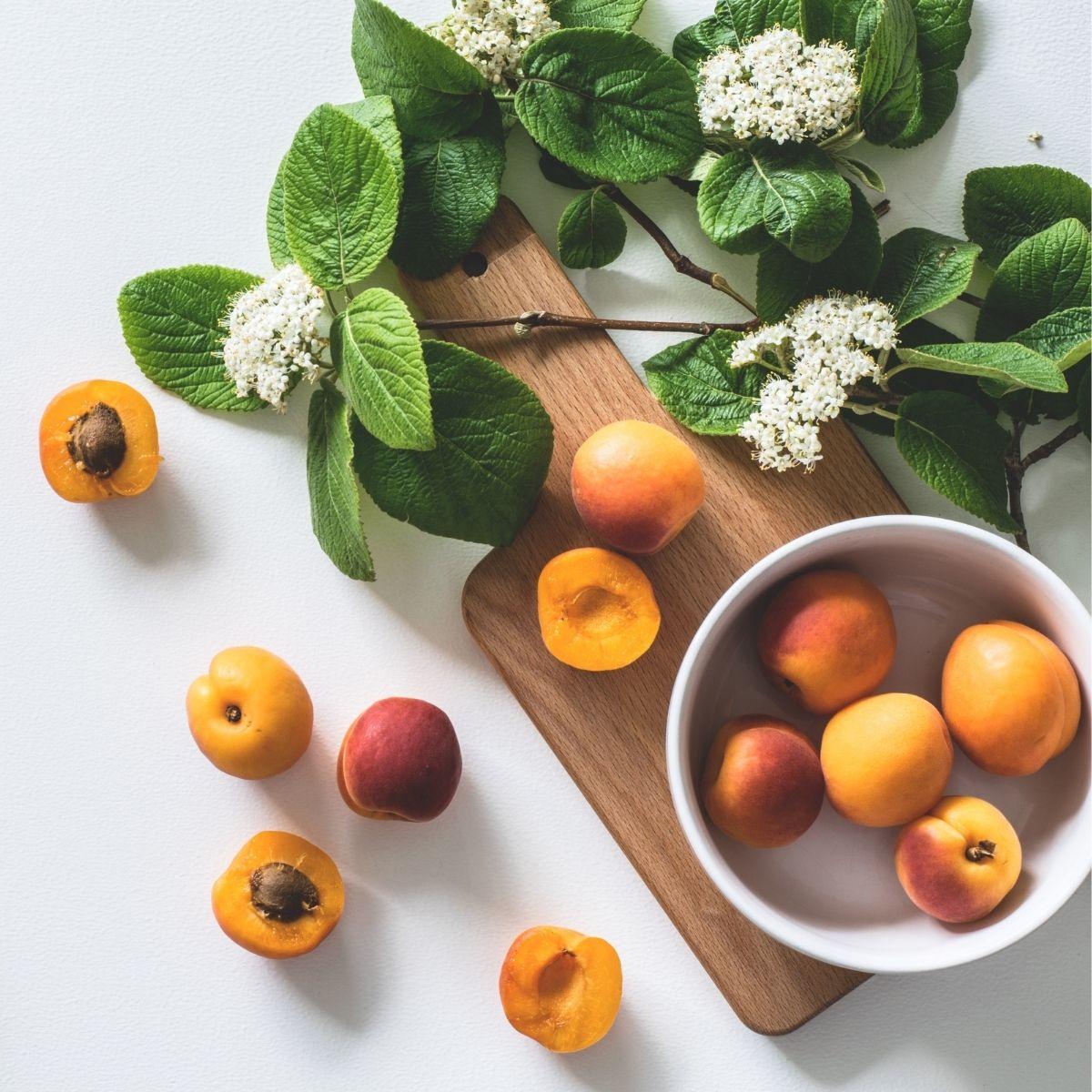 vitamines herboristerie des mille feuilles