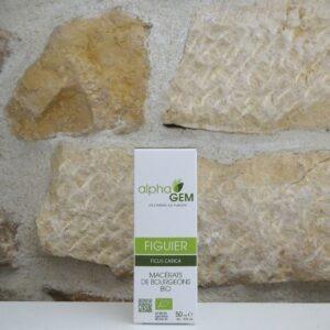 Gemmothérapie bourgeons de Figuier - ficus carica en 50 ml bio. Herboristerie des mille feuilles