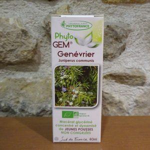 Bourgeons de Genévrier gemmothérapie bio Herboristerie des mille feuilles