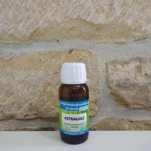 Extrait hydroalcoolique d'Astragale bio. Herboristerie des mille feuilles