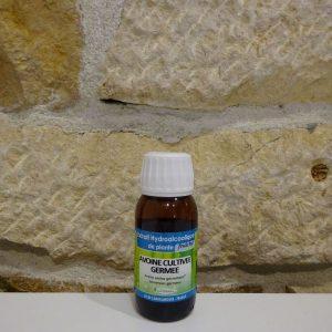 Extrait hydroalcoolique d'Avoine bio. Herboristerie des mille feuilles