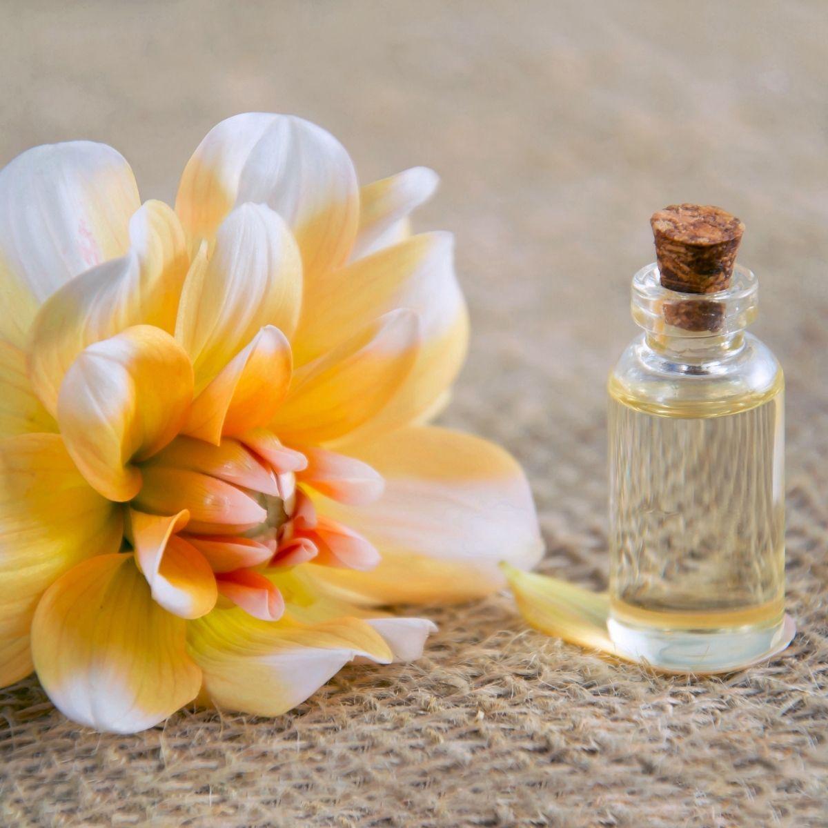 Quantiques olfactifs DEVA les émotions: des synergies d'huiles essentielles à respirer. Herboristerie des mille feuilles